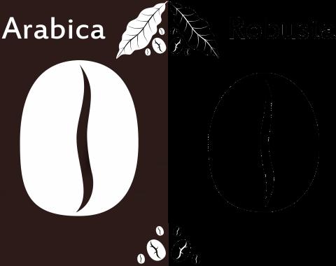 arabica_robusta-1024x760